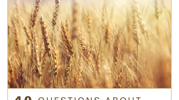 cover image for 40 Questions About the Great Commission